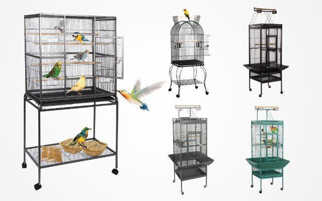 10 Best Parrot Cages in 2019