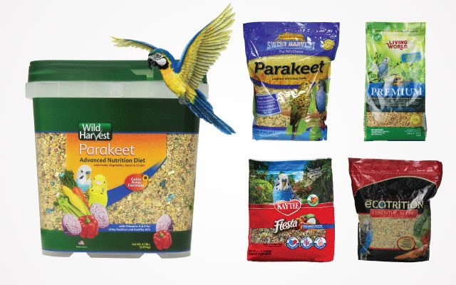 12 Best Parakeet Food Products in 2019
