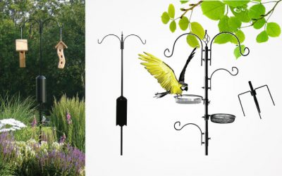 Best Bird Feeder Poles in 2019