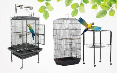 10 Best Large Bird Cages in 2019