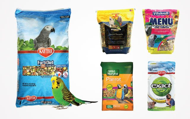 12 Best Parrot Food Products in 2019