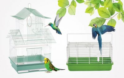 9 Best Small Bird Cages in 2019