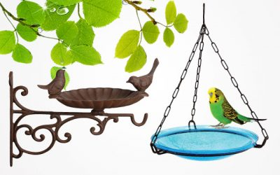 Top 9 Best Hanging Bird Baths For Your Garden in 2019